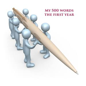 My 500 - The First Year